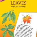 Dover Publications - Leaves
